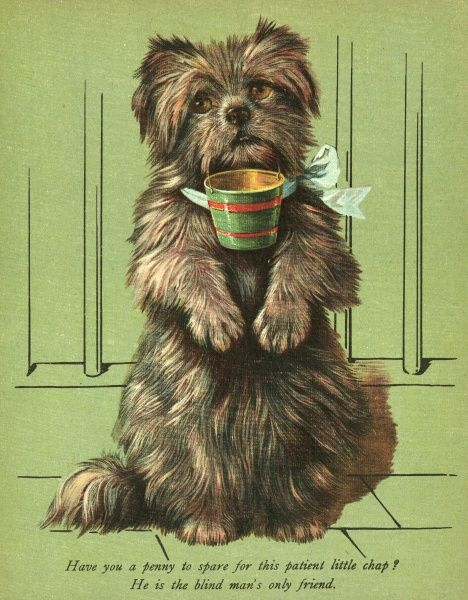 A cute dog begs with a cup attached to its neck. Date: circa 1912