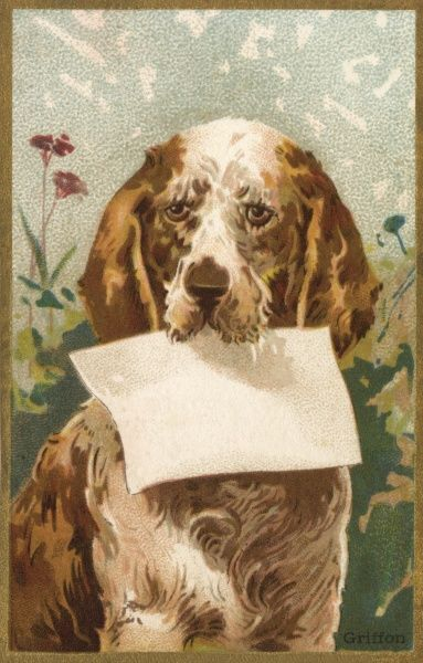 A labrador (?) invites you to write your own message on this greeting card. Date: late 19th century