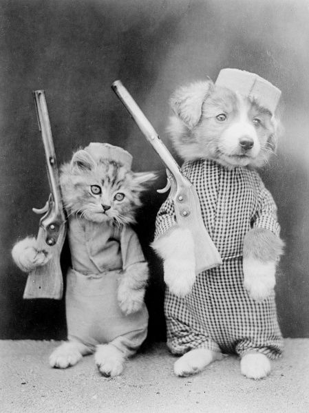 Dog and cat recruits with their rifles over their shoulders. Date: early 1930s