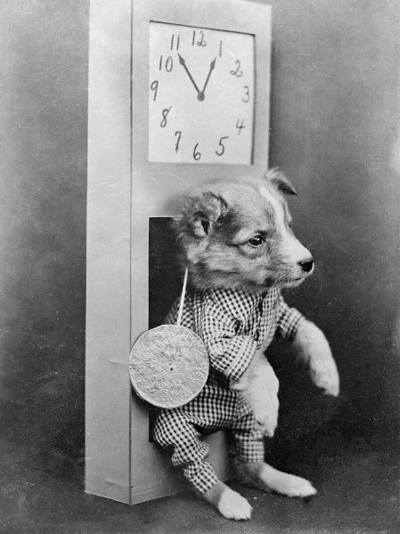 Dog sitting within a clock Date: early 1930s