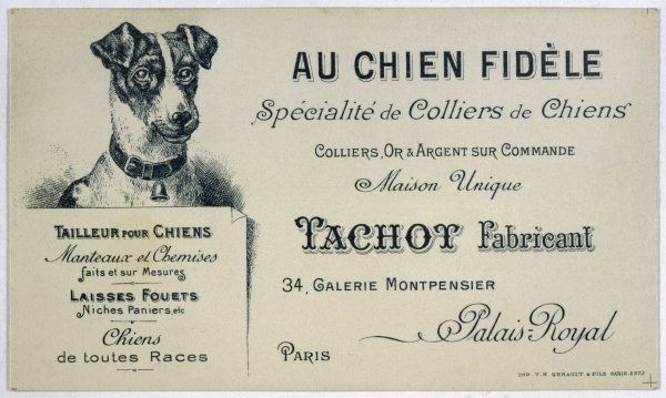 The trade card of Tachot, fabricant, specialising in dog collars, whose premises are in the Palais Royal, Paris, at no 34 in the Galerie Montpensier, a fairly posh address !