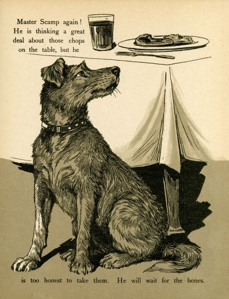 The smell of those chops on the table is almost more than he can bear, but he waits in hope to get the bones
