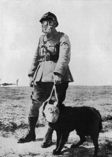 Dog and Handler wearing gas masks at the battle front. Strecher bearers carry a wounded man in the background, the war dogs were frequently employed to locate wounded men in no man's land Date: 20th century