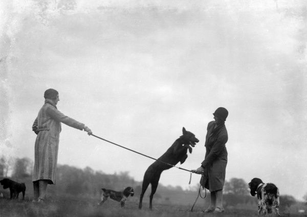 Two women training dogs to jump over a rope. Date: early 1930s