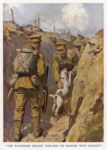 Private Brown of the North Staffordshires, in the trenches in France, is found by his pet terrier dog which has made its way, alone, from his home in Hammersmith, West London