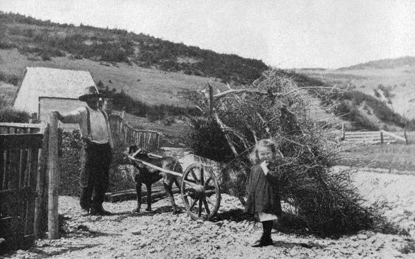 A dog pulling a cart of sticks on a farm in Perce, Quebec, Canada. a man and a small girl look on Date: 20th century
