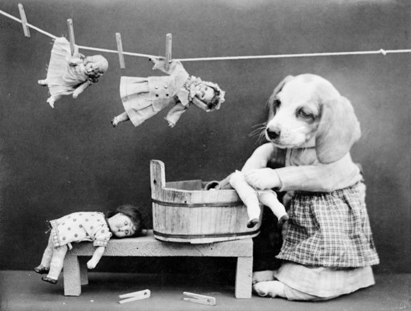 A dog does the laundry, pegging out a row of freshly washed dolls on a washing line. Date: early 1930s