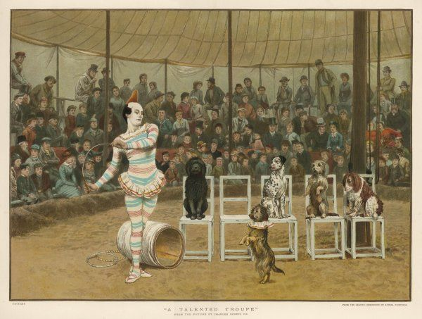 A circus clown with five dogs in a circus ring