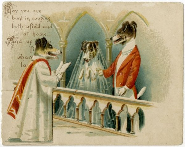 Two dogs are joined in holy matrimony by a dog in holy orders (who is doubtless wearing a dog collar beneath his robes)