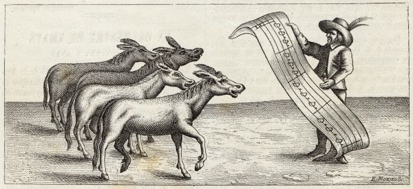 A quartet of donkeys, selected for the note of their bray, perform - though it is unlikely that they could actually read the musical score