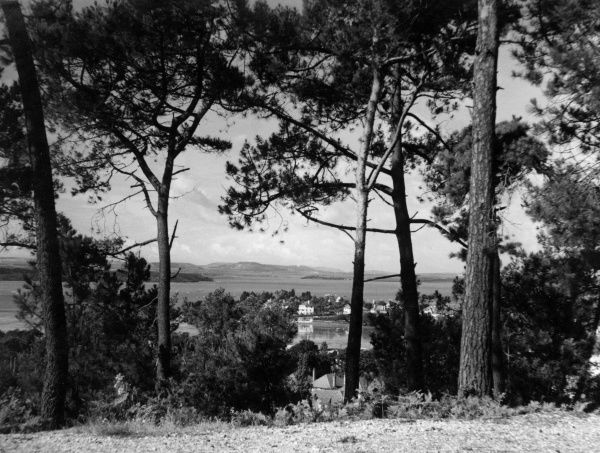 This fine view is from Blake Hill, Dorset, England, overlooking the village of Lilliput, with Poole Harbour in the background. Date: 1960s