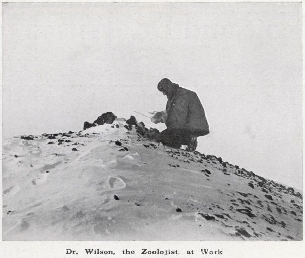 "Dr Wilson, zoologist and artist, at work in the Antarctic (during the 'Discovery"" 1901-3 expedition) examining a thermometer"