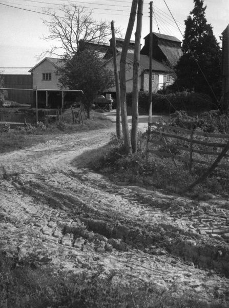 The road to the farm during a summmer drought; a study of dried or caked mud. Date: 1950s
