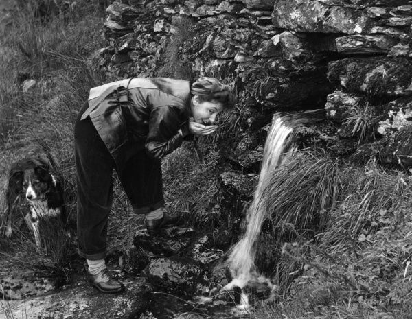 A woman cups her hands to get a refreshing cold drink from a hill stream. Her dog begrudingly waits his turn! Date: 1950s