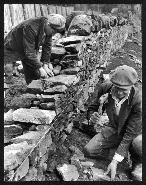 Two working class men in flat caps build a dry stone wall together at Galashiel, Selkirkshire, Scotland