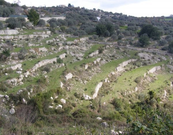 Dry stone walls, Valle dell' Anapo, Ferla, leading to Pantalica archaeological valley, Sicily, Italy