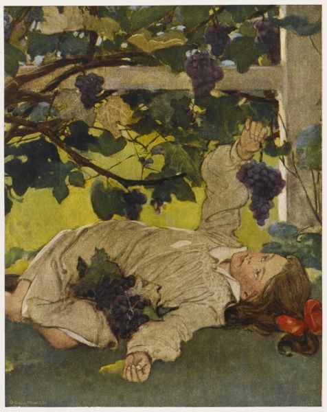 A young girl lies in a garden eating plump grapes from a vine
