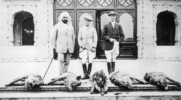 EDWARD VIII, When Prince of Wales, photographed in India with some of the 'Bag' after a successful day's 'Pig Sticking' (hunting wild boar)