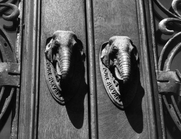 The fine pair of elephant head doorknockers on the doors of the Cutler's Hall, City of London. Date: 1950s