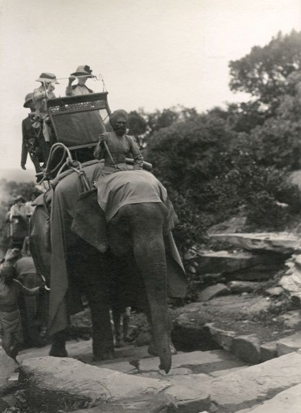 An elephant used for transport, picking its way up some steps at Sanchi, India. Date: 1918