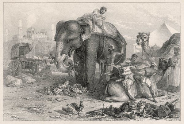 An Indian elephant unloading baggage