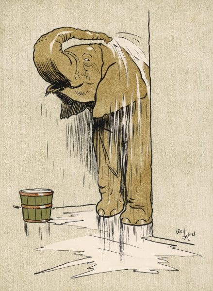 An elephant washing itself with water from a bucket