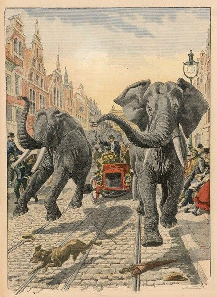 Six elephants from a menagerie in transit escape from Hamburg railway station and have to be pursued through the streets of the city, much to the consternation of Hamburgers