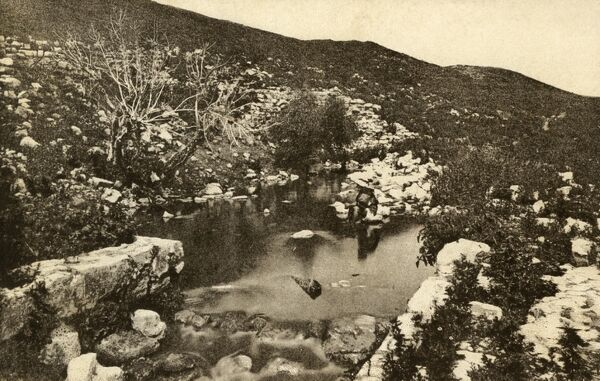 "Elisha's Fountain - which supplied natural fresh spring water to Jericho and which is mentioned in the Bible in II Kings, chapter ii, 19-22- as ""the waters which Elisha healed"". Date: circa 1910s"
