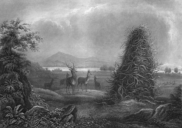 Elks contemplate the 'Elkhorn Pyramid' in Missouri. Date: 1850