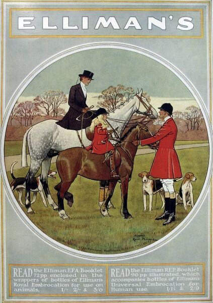 Colour advertisement from 1914 for Ellimans Embrocation showing a hunting scene. Ellimans was a well-known remedy for easing joint pain with formulae for both horses and humans