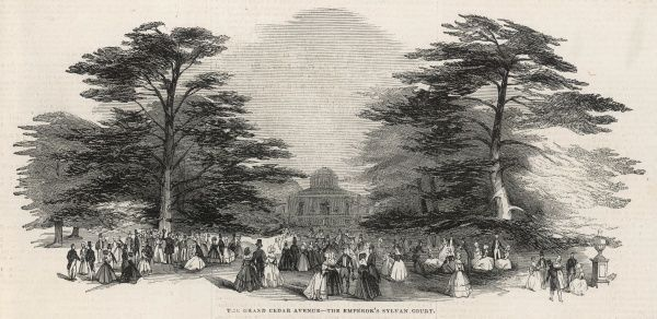 The Grand Cedar Avenue during the Duke of Devonshire's grand fete at Chiswick House, where noble guests, included the Emperor of Russia and Prince Albert, promenaded and held court beneath the trees