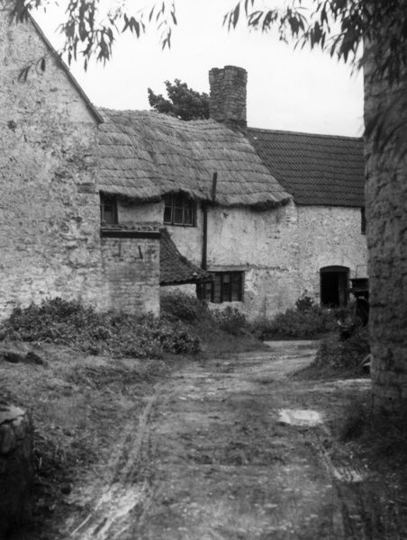 A typical thatched farmhouse and farmyard in the Cheddar district of Somerset, England. Date: 19th century