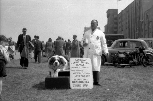 Behind the main grandstand the St. Bernard dog and his keeper collecting donations for the Canine Defence League