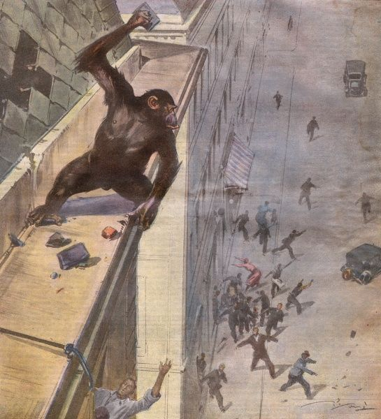 Reluctant to participate in 'monkey gland' rejuvenation treatment, a monkey escapes onto the roof of a hospital in Prague and defies captors for an hour Date: 1932