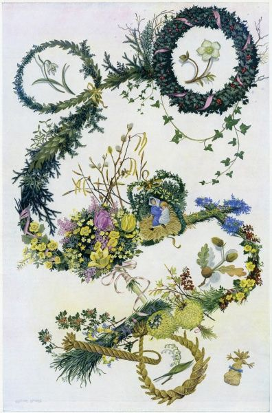 The evergreens and flowers associated with English customs and legends depicted here by Pauline Baynes in a charming design