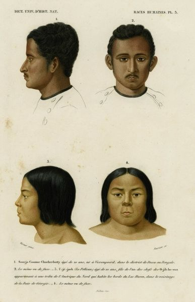 Faces of racial types. At the top is a 20 year old man from Bengal, India. Below is a 10 year old boy, son of an Ojibwe chief, North America. Date: 1849