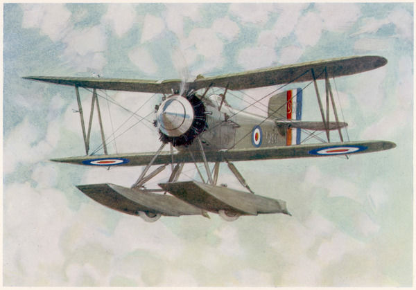 This is the main fighter used by the British Fleet Air Arm during the 1920s : depicted is the seaplane version, in which floats replace the undercarriage