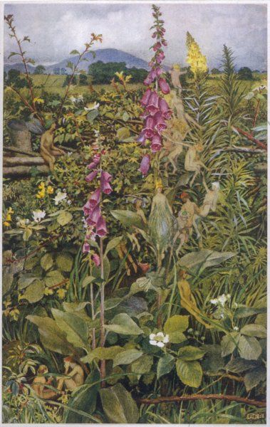 Naked fairies among the foxgloves, in Ancient Britain