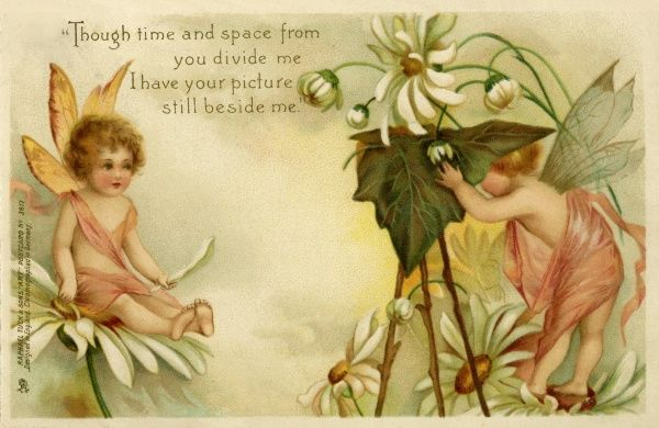 A fairy being photographed. Artist Anon. A fairy being photographed by another fairy amongs white daisies Date: circa 1900