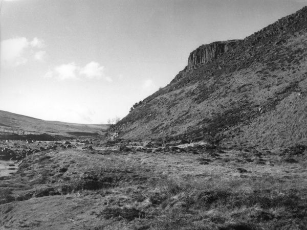 Falcon Clints, by the River Tees, County Durham, England. This outcrop is dolerite and part of Whin Sill, on the South Durham moorlands. Date: BC