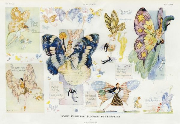 A series of charming illustrations by A K Macdonald depicting types of society ladies as summer butterflies. One plays tennis, another golf while others bathe, shop, frequent nightclubs or Mayfair