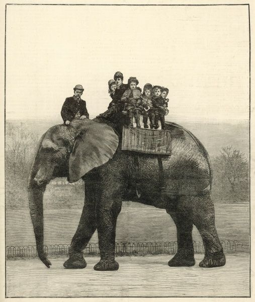 'A Farewell ride on Jumbo'. The famous and popular African elephant kept at the London Zoological Gardens at Regents Park, London, giving a group of children a ride on his back