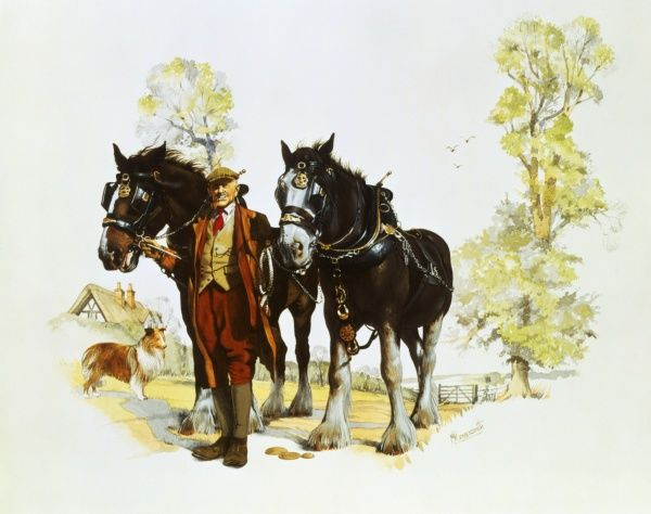A farmer stands on a track holding onto the reins of two fine shire horses, as a collie dog watches on. Watercolour painting by Malcolm Greensmith