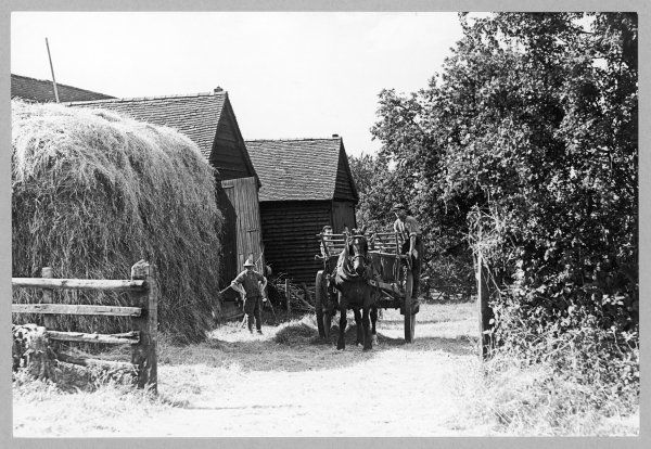 Farmers at Holmer Green, Buckinghamshire; one standing beside a huge haystack and the other driving a horse and cart