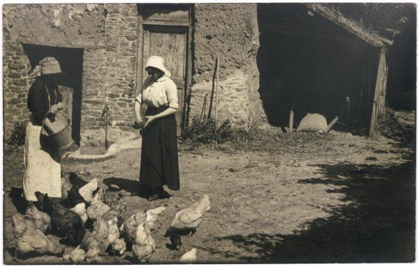 Two young women feeding poultry in the farmyard