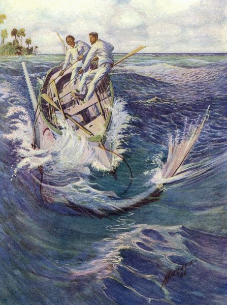 The dangerous pursuit of fishing for sawfish off the coast of Florida Date: 1906