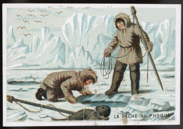 Fishing for seal through the ice