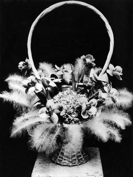 Baskets of flowers with feathers, to take the place of ferns or other greenery, are the latest idea in home decoration. Date: 1930s