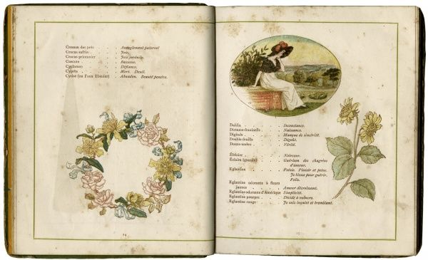 Two pages from a book about the symbolism of flowers, popular in Victorian times: from Crowsbill to Dried Flax. Date: 1884