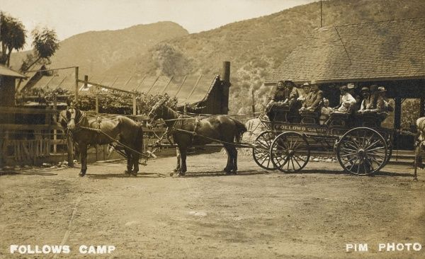 Horse and carriage at Follows Camp, California, America